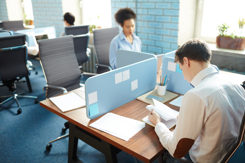 employment law service